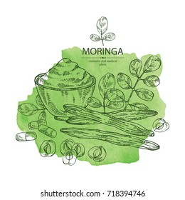 Watercolor background with moringa: plant, leaves, pill and powder of moringa. Super food. Vector hand drawn illustration.