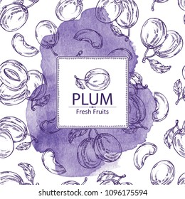 Watercolor background with plum and plum slice. Vector hand drawn illustration