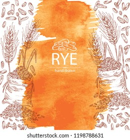 Watercolor background with rye: ears, bag of grain and rye grain. Vector hand drawn illustration