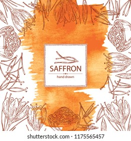 Watercolor background with saffron: flower and saffron stamens. Vector hand drawn illustration.