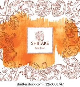 Watercolor background with shiitake: mushroom and a bit of shiitake. Mushroom. Vector hand drawn illustration.