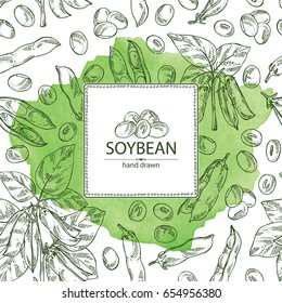 Watercolor background with soybean: bean, soy pod, plant and leaves. Vector hand drawn illustration.