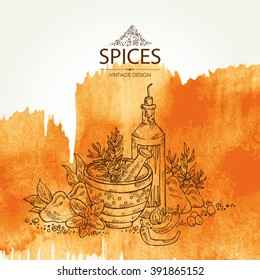 Watercolor background with spice and herb , hand drawn