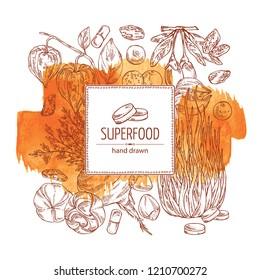 Watercolor background with super food: guarana, spirulina algae, maca peruvian, goji berries and physalis. Super food. Vector hand drawn illustration.