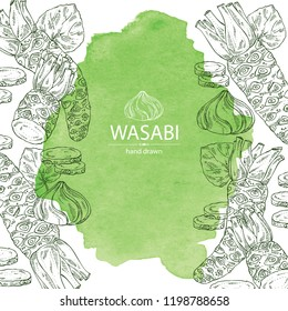 Watercolor background with wasabi: root, leaves and a piece of wasabi root. Vector hand drawn illustration.