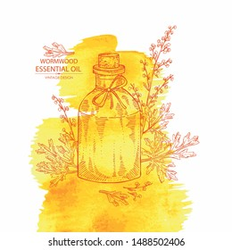 Watercolor background with wormwood and bottle of wormwood essential oil. Cosmetic, perfumery and medical plant. Vector hand drawn illustration.