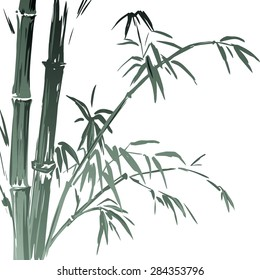 Watercolor Bamboo branches isolated on the white background. Vector illustration EPS 10