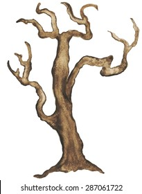 Watercolor bare tree, snag, bough, driftwood, branch closeup isolated on white background. Hand painting on paper