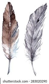 Watercolor black and gray feather set boho vector isolated