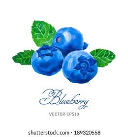 Watercolor blueberries isolated on white. Hand drawn illustration. Vintage style. Vector.