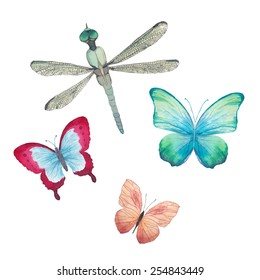 Watercolor butterflies and dragonfly set. Vector artistic insects in vector