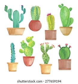 Watercolor cactus in pots set