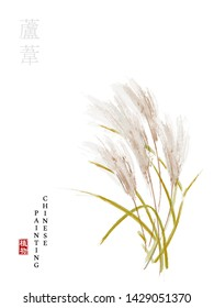 Watercolor Chinese ink paint art illustration nature plant from The Book of Songs reed. Translation for the Chinese word : Plant and reed
