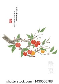 Watercolor Chinese ink paint art illustration nature plant from The Book of Songs Sour Jujube. Translation for the Chinese word : Plant and Sour Jujube