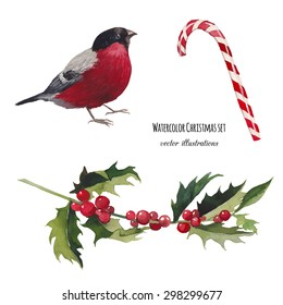 Watercolor Christmas set. Hand drawn bullfinch bird, striped candy and mistletoe branch isolated on white background. Vintage vector objects collection for holiday design