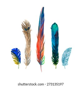 Watercolor colorful hand painted feathers design collection. Beautiful set for you projects.