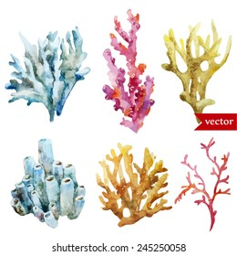watercolor, corals, set, sponge, ocean