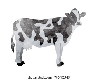 Watercolor cow on white background