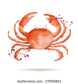Watercolor crab. Fresh organic seafood. Vector illustration.