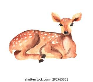 Watercolor deer over white, Vector