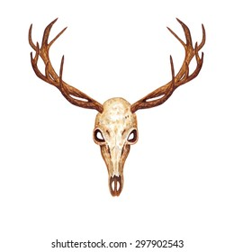 Watercolor Deer Skull, isolated on white background. Vector Element for your design. Hand drawn illustration.