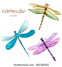 Watercolor dragonfly set. Vector isolated art insects in vector.