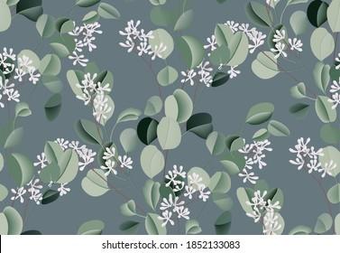 Watercolor eucalyptus leaf plant, silver dollar plant succulent illustration, Flower evergreen wedding decoration. Botanical  wreath branch and buds. Garden seamless pattern bouquet