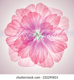 Watercolor floral round patterns. Vectorized watercolor drawing.