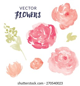 Watercolor Flower Vector With Blooms and Leaves.