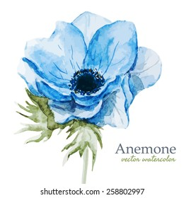 watercolor, flowers, anemones, blue, spring