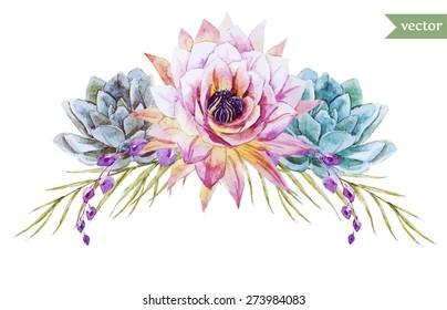 watercolor flowers element   succulents