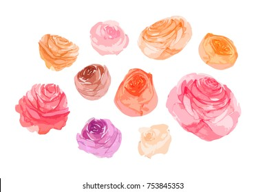 Watercolor flowers roses,isolated on white. Sketched romantic,wedding,valentines day design. Handdrawn Vector,imitation of Watercolour style