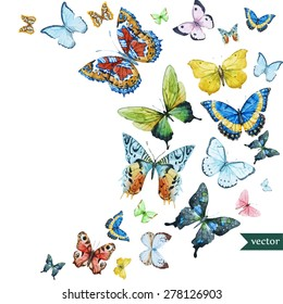watercolor flying butterflies, vector