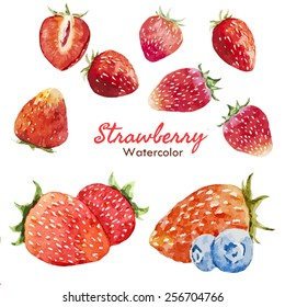 watercolor, food, berry, strawberry