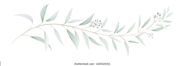 Watercolor green bouquet with eucalyptus leaves and branches. Greenery leaf hand-painted isolated. Can be used as being an element in the decorative design of invitation, wedding or greeting cards.