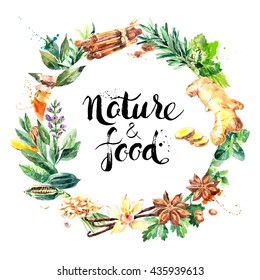 Watercolor hand drawn natural fresh herbs and spices on white background. Eco food organic cafe menu design