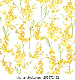 Watercolor hand drawn seamless pattern with spring tender flowers - yellow mimosa on the white background