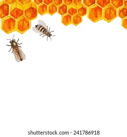 Watercolor honey background. Hand drawn frame with honeycomb and bees in vector