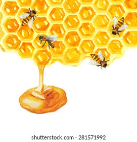 Watercolor Honeycomb and bee over white, Vector