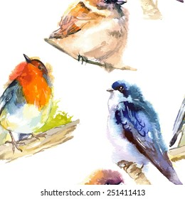 watercolor illustration with bird robin  swallow  and sparrow