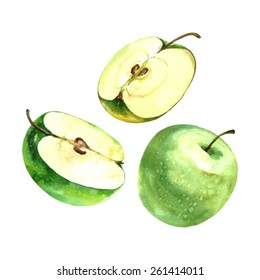 Watercolor Illustration of a sliced apple and green apple. Vector isolated.