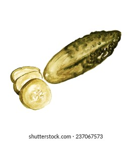 Watercolor image of salted cucumber whole and slices. Vector eps8