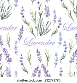 Watercolor lavender botanical pattern. Hand painting. Watercolor. Vector illustration. Seamless pattern for fabric, paper and other printing and web projects.