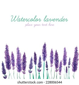Watercolor lavender field border. Background with hand painted vintage plants. Vector illustration.