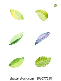 watercolor leaves vector edition