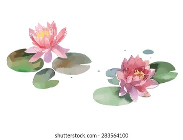 watercolor lily isolated on white background, vector illustration
