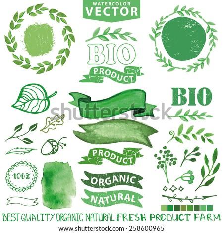 Watercolor Logo Set Badgeslabelsribbonsplants Leaves Elementswreaths