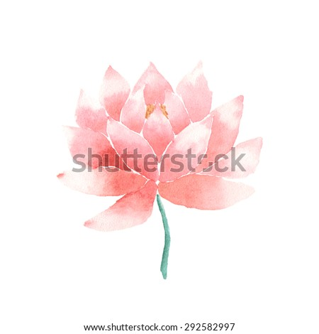 watercolor lotus flower pink vector painted のベクター画像素材