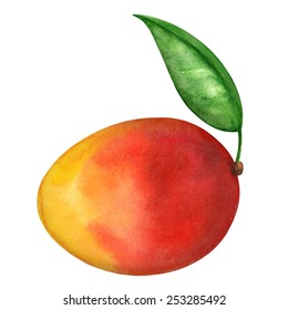 Watercolor mango fruit whole with leaf closeup isolated on white background