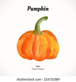 Watercolor orange pumpkin. Halloween style. Recent watercolor paintings of organic food. Veggie menu. For the autumn holidays. Ripe vegetables